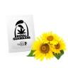 Sunflower Royal Guardians